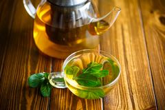 Hot green tea with fresh mint Stock Images