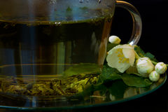 Hot green tea with jasmine Royalty Free Stock Photography