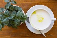 Hot Greentea matcha latte wood backgroundGreen tea Royalty Free Stock Images