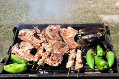 Barbecue grill in the garden. Steaks, kebabs and peppers. royalty free stock photography