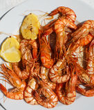 Hot grilled black tiger prawns on white plate with lemon Royalty Free Stock Photography