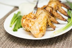 Hot grilled chicken wings Royalty Free Stock Images