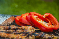 Hot grilled food in garden Stock Photography