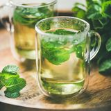 Hot herbal mint tea drink in glass mugs, square crop Stock Image