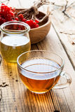Hot herbal tea with honey and viburnum Royalty Free Stock Photography