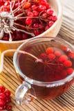 Hot herbal tea with honey and viburnum Stock Photo