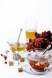 Hot herbal tea with honey and viburnum, Stock Photography