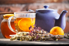 Hot herbal tea Stock Photography