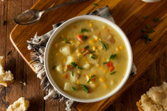 Hot Homemade Corn Chowder Royalty Free Stock Photo