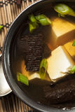 Hot Homemade Miso Soup Royalty Free Stock Photography