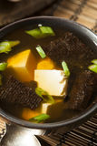 Hot Homemade Miso Soup Stock Image