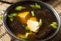 Hot Homemade Miso Soup Stock Photography