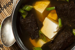 Hot Homemade Miso Soup Royalty Free Stock Photos