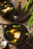 Hot Homemade Miso Soup Stock Photos
