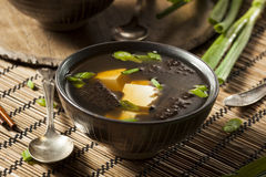 Hot Homemade Miso Soup Royalty Free Stock Photo