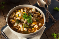 Hot Homemade White Bean Chicken Chili Royalty Free Stock Photos