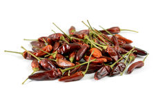 Hot hungarian paprika Royalty Free Stock Photography