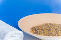 Hot inhaled chamomile Stock Image