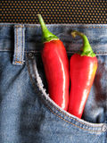 Hot Jeans 2. A pair of fashionable hot denim jeans. The red chilies are used as a concept to depict the denim is of the current fashion trend stock images