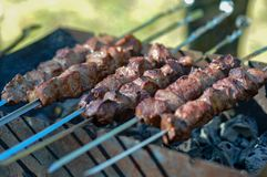Hot kebab pinned on skewers lies on the grill royalty free stock image
