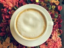 Hot Latte. In White Cup stock images