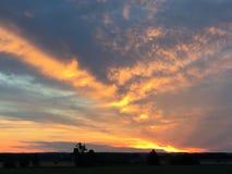 Fire sunset. Sunset evening bright wild Royalty Free Stock Photo