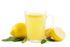 Hot lemon with sage. Hot lemon drink with sage leaves on white royalty free stock photo