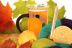 Hot lemon tea with thermometer Stock Image