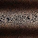Hot leopard skin seamless background. Used as raw material for screen and print pattern stock photography