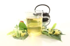 Hot lime blossom tea Royalty Free Stock Images