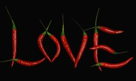 Hot love. Red hot chili peppers on black background Stock Images