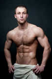 Hot male model Royalty Free Stock Images