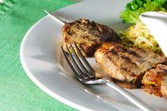 Hot Meat Dish - Shashlik Royalty Free Stock Photo