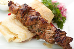 Hot Meat Dish - Shashlik Stock Photos