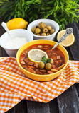 Hot meat and vegetable soup Stock Images