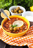 Hot meat and vegetable soup Stock Photography