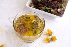 Hot medical herbal tea. In a glass cup, close up Stock Images