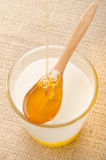 Hot milk in a glass and honey on a wooden spoon Royalty Free Stock Images