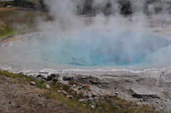 Hot mineral pool. Beautiful blue hot mineral pool in Yellowstone Royalty Free Stock Photography