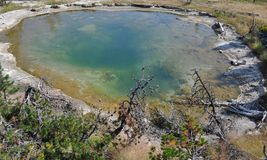 Hot mineral pool. Beautiful blue hot mineral pool in Yellowstone Royalty Free Stock Photo
