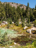 Hot mineral pool in mountain valley. Hot, mineral water creates a colorful pond in the active volcanic mountain valley at Lassen Volcanic National Park Stock Photo