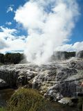 Hot Mud Spring, Rotorua, New Zealand Royalty Free Stock Photo