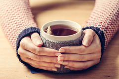 Hot mug of tea warming woman`s hands in retro jumper. Royalty Free Stock Photography