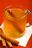 Hot Mulled Apple Cider Royalty Free Stock Photos