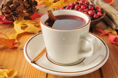 Hot mulled cranberry juice Stock Photography