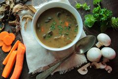 Hot mushroom soup Stock Images