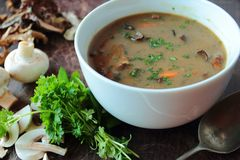 Hot mushroom soup Stock Photos