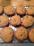 Hot Oatmeal Chocolate Chip Cookies Royalty Free Stock Photos