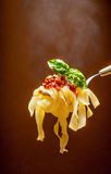 Hot pasta with tomato sauce Royalty Free Stock Images