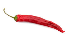 Hot pepper. Red hot pepper isolated on a white background, a close up Royalty Free Stock Photo
